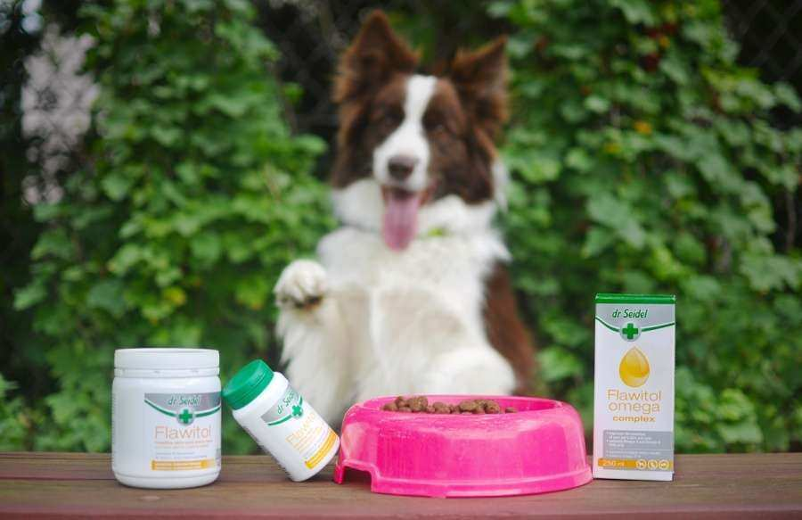 Dietary supplements for animals